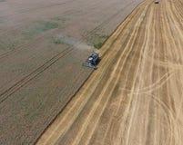 收获麦子收割机 库存照片