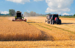 收获麦子的收割机组合和拖拉机在晴朗的夏日 免版税图库摄影