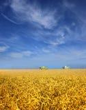 收获麦子的组合 库存图片