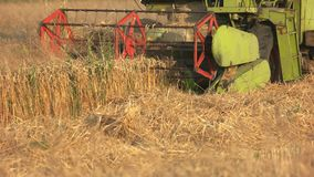 收获麦子的联合收割机 影视素材