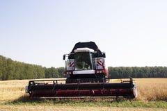 收获麦田工作的收割机机器 收获金黄成熟的组合农业 库存图片