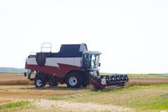 收获麦田工作的收割机机器 收获金黄成熟的组合农业 免版税库存图片