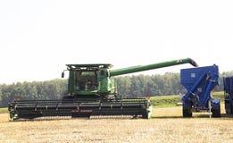 收获麦田工作的收割机机器 收获金黄成熟的组合农业 库存照片