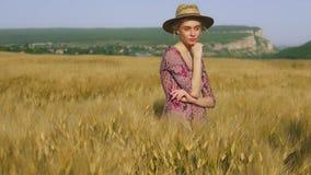 收获黑麦的麦田的时髦的女人农夫 影视素材