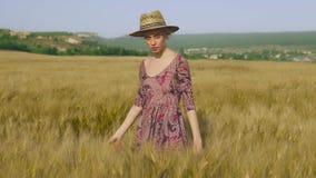 收获黑麦的麦田的时髦的女人农夫 股票视频