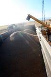 收获组合的麦子 免版税库存照片