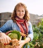 收获从屋顶温室庭院的友好的妇女新鲜蔬菜 免版税库存图片