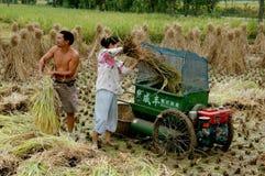收获pengzhou米的瓷农夫 库存照片