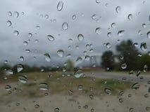 收集丢弃本质雨视窗 免版税图库摄影