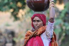 收集印度水 免版税库存照片