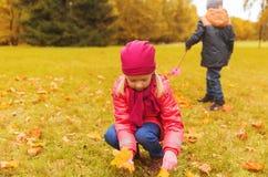 收集叶子的孩子在秋天公园 图库摄影