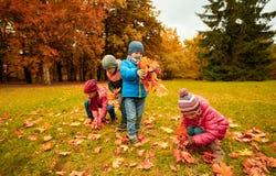 收集叶子的小组孩子在秋天公园 库存照片
