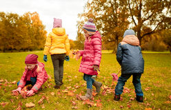 收集叶子的小组孩子在秋天公园 免版税库存照片