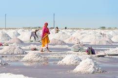 收集在盐农场,印度的盐 免版税库存图片