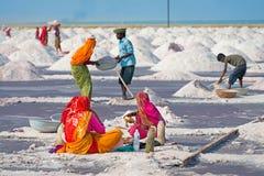 收集在盐农场,印度的盐 免版税库存照片