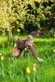 收集复活节彩蛋的逗人喜爱的小女孩 免版税图库摄影