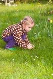 收集复活节彩蛋的逗人喜爱的小女孩 库存照片