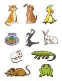 收集宠物 免版税图库摄影