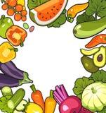收集成熟蔬菜 库存照片