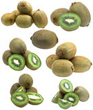 收集新鲜水果猕猴桃 免版税图库摄影