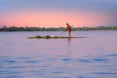 收集杂草的本地工人从在Inle湖,缅甸的淡水 免版税库存照片