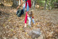 收集栗子的小女孩在森林里在秋天在母亲附近 库存图片