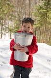 收集槭树树汁 免版税库存图片
