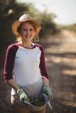 收集橄榄的微笑的少妇画象在农场 免版税图库摄影