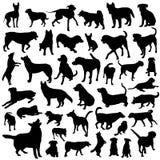 收集狗向量 免版税库存照片
