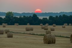 收集的和干干草在一个大草甸 以树和落日为背景他们的上面的 免版税库存图片