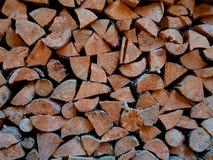 收集的木柴在秋天为冬天 免版税库存图片