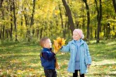 收集秋叶的孩子在森林地 免版税库存图片