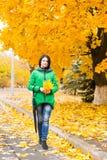 收集秋天叶子的时兴的少妇 库存图片