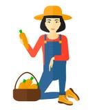 收集红萝卜的农夫 库存图片