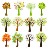 收集结构树向量 库存图片