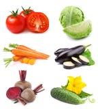收集蔬菜 库存图片