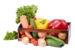 收集蔬菜 免版税图库摄影