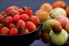 收集蕃茄,抗癌便宜的食物 免版税库存图片