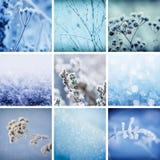 收集设计人设置了雪雪花冬天您 免版税图库摄影