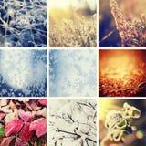 收集设计人设置了雪雪花冬天您 免版税库存照片