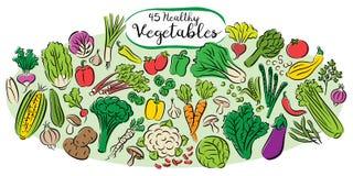 收集设计要素蔬菜 库存图片