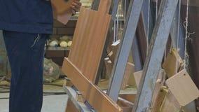 收集门的过程从木空白,木门的生产 股票录像