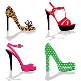 收集鞋子妇女 免版税库存图片