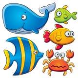 收集鱼海运 库存图片