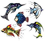 收集鱼 图库摄影