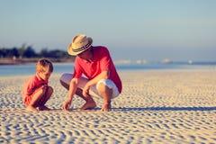 收集贝壳的父亲和儿子在夏天 图库摄影