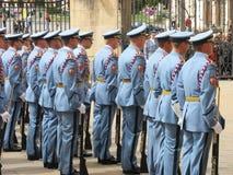 更改卫兵,布拉格,捷克共和国 库存照片