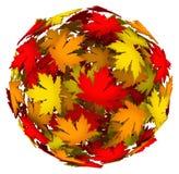 改变颜色秋天秋天叶子球的叶子 库存照片