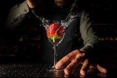 放一朵红色玫瑰的男服务员入玻璃 库存图片