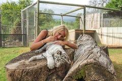 放下在一只白色小狗老虎的女孩 图库摄影